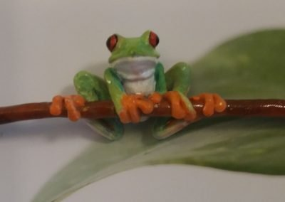 frogfront2