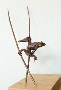 natalie Staniforth frog